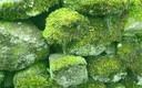 añoranza...verde (3)