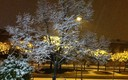 Nieve en Tres Cantos