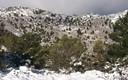 manto de nieve sobre las simas