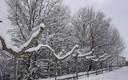 Nieva en Vadocondes
