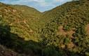 Sierra del Espadán