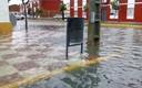 Inundacion Isla Mayor 18 enero de 2015