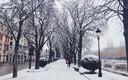 Burgos nevado (calle valladolid)