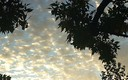 Nubes golosas
