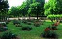 Rosales de los jardines Cervantes