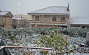 Nevando en Peas de San Pedro